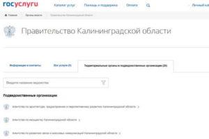 Какие государственные услуги доступны в Калининграде – экономим время и деньги!