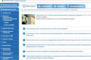 Портал госуслуг в Кирове– без бюрократии и проволочек!