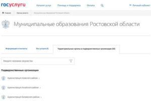 Портал госуслуг в Ростове на Дону– преимущества очевидны!