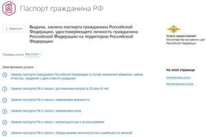 Портал госуслуг в Саранске– сервис на высоком уровне!
