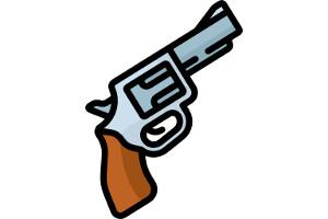 Мфц разрешение на оружие